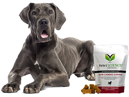Find VetriScience Vetri Cardio Canine Bite-Sized Chews for Dogs at 1800PetMeds