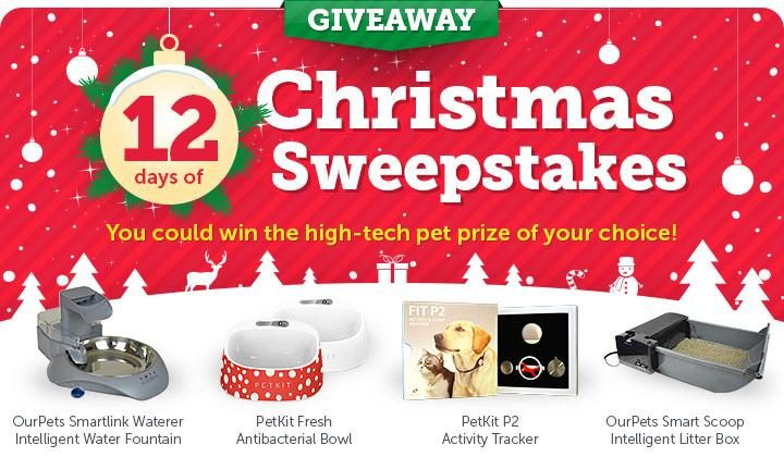 12 Days of Christmas Sweepstakes