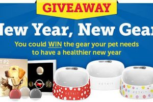 [Sweepstakes] Enter to win high-tech pet gear in our New Year, New Gear Giveaway!