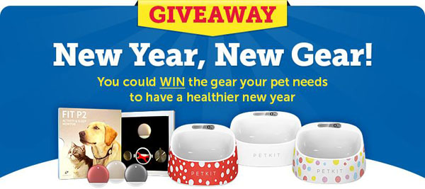 Enter the New Year, New Gear Sweepstakes!