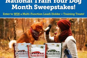 [Sweepstakes] Enter to Win Awesome Training Gear for your Dog!
