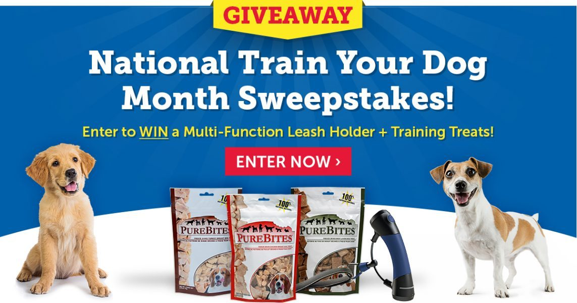 Enter the National Train Your Dog Month Sweepstakes!