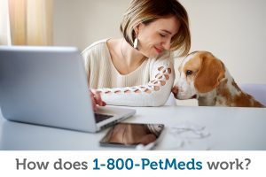 How does 1-800-PetMeds work?