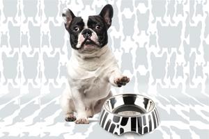 How often should you wash your pet's bowls?