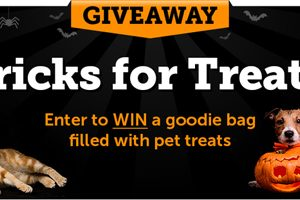 [Enter to win] Tricks for Treats Sweepstakes