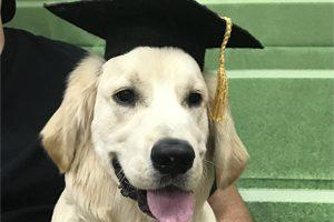Leo Graduated!