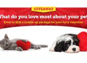 [Enter to win] My Furry Valentine Sweepstakes