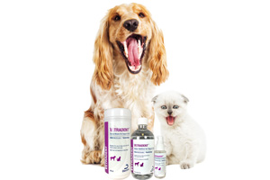 [NEW PRODUCT] National Pet Dental Health Month