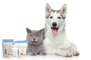 [NEW PRODUCT] How to help your pet's behavior