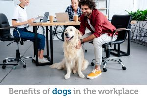 Simple rules to ensure your dog is welcome in the workplace