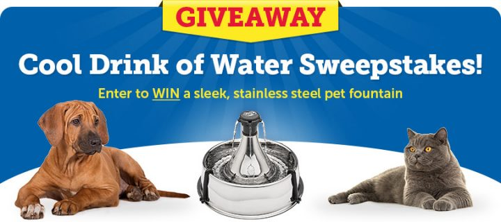 Enter the Cool Drink of Water Sweepstakes