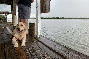 Leo Goes Fishing