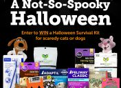 [Giveaway] A-Not-So-Spooky Halloween