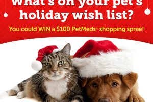 [Giveaway] Your Pet's Holiday Wish List
