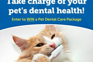 [Giveaway] Something To Smile About Sweepstakes