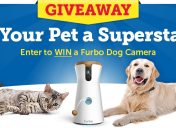 [Giveaway] #SuperStarPet Sweepstakes