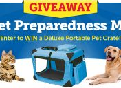 [Giveaway] National Pet Preparedness Month Sweepstakes