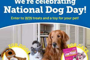 [Giveaway] National Dog Day Sweepstakes