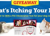 [Giveaway] What's Itching Your Pet Sweepstakes