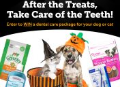 [Giveaway] After the Treats Sweepstakes