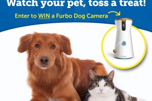 [Giveaway] Watch Your Pet, Toss A Treat Sweepstakes