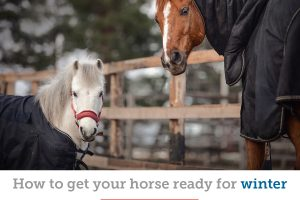 Tips to prepare your horse for cold weather