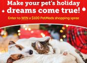 [Giveaway] Holiday Dreams Sweepstakes