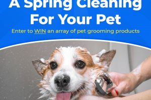 [Giveaway] Spring Cleaning For Your Pet