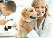 Taking your pet to the vet: How frequent is enough?