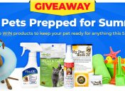 [Giveaway] June is National Pet Preparedness Month!