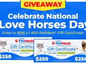 [Giveaway] Celebrate National I Love Horses Day!