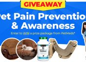 [Giveaway] Animal Pain Awareness Month