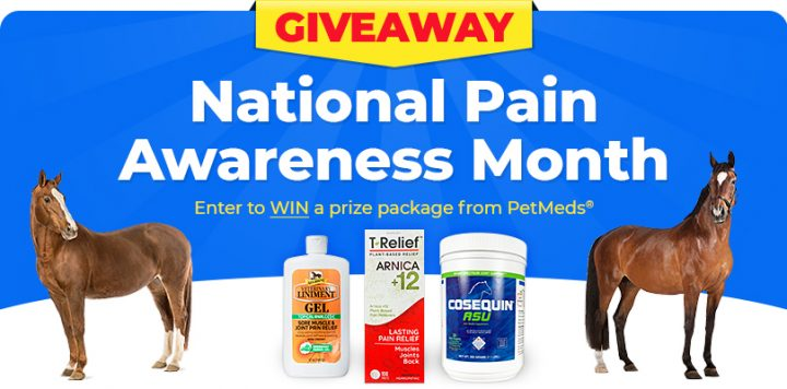 [Giveaway] Pain Awareness For Horses