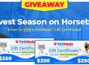 [Giveaway] 5 Reasons To Spend Harvest Season on Horseback